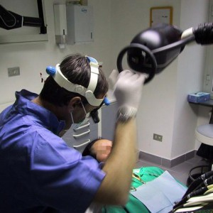 un dentista al lavoro