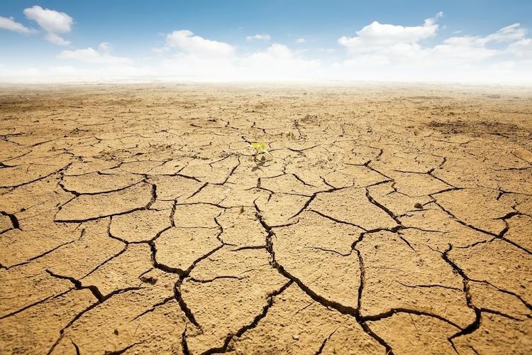 Clima troppo secco la protezione civile dichiara lo stato for Alto pericolo il tuo account e stato attaccato