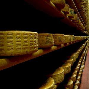 asiago formaggio