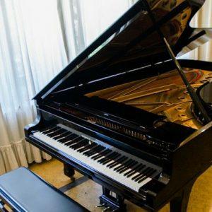 Velo - pianoforte in vialla montanina