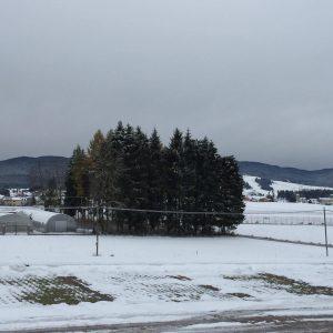 neve in altopiano 4
