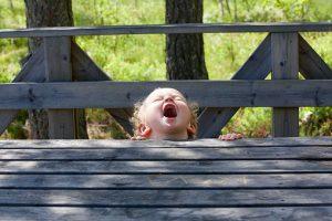 screams-of-joy-2481573__340
