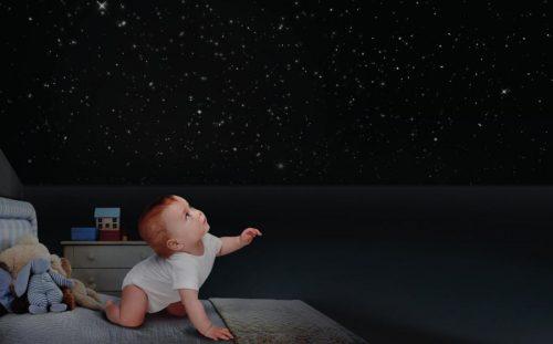 bimbo stelle