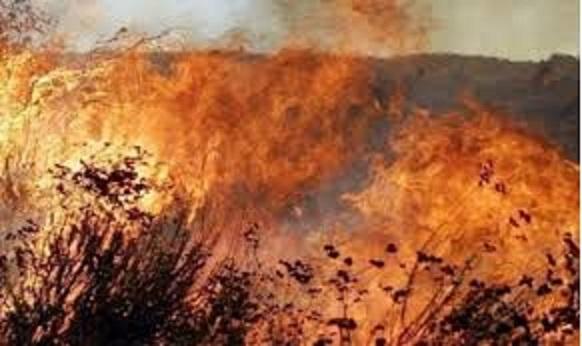 Pericolo incendi l 39 unione montana lancia un appello non for Alto pericolo il tuo account e stato attaccato