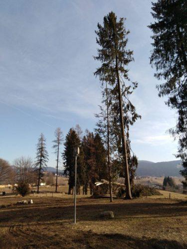 asiago Parco Millepini